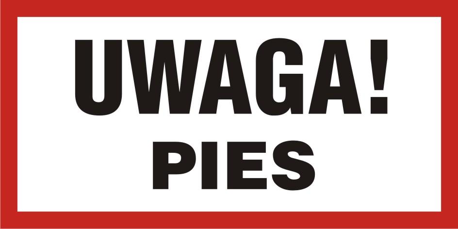 UWAGA! Pies