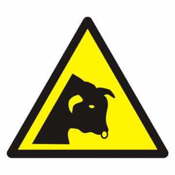 Znak Ostrzeżenie przed bykiem