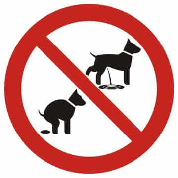 Zakaz wyprowadzania psów 2