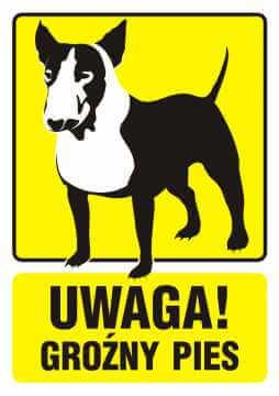 UWAGA! Groźny pies