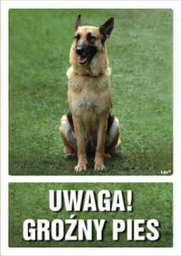 UWAGA! Groźny pies 5